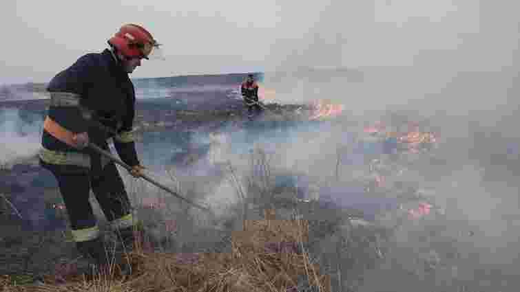 Рятувальники Львівщини за добу ліквідували п'ять пожеж в екосистемах
