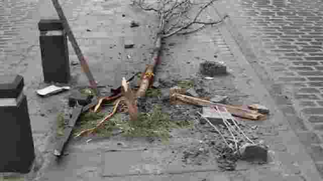 Слідчий поліції, який зламав дерева на вул. Городоцькій, погодився відшкодувати збитки