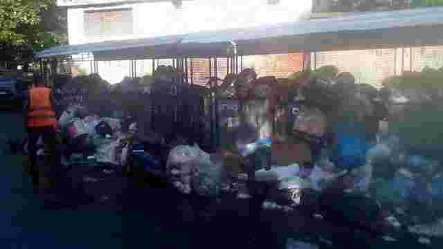У Львові виникли труднощі з вивозом сміття