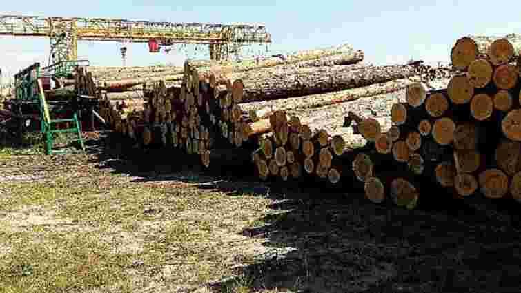 На Волині викрили корупційну схему вивезення лісу за кордон
