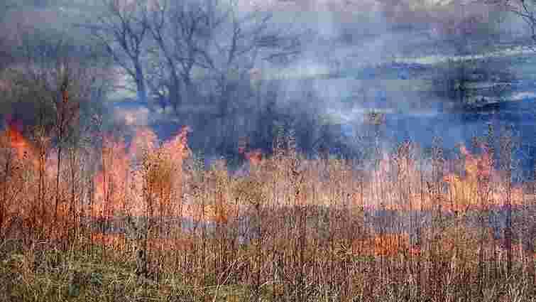 Спалювання стерні у селах Львівщини призвело до масштабних займань