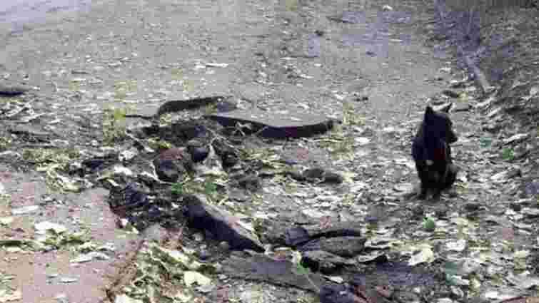Штаб АТО оприлюднив докази самообстрілів бойовиків на Луганщині