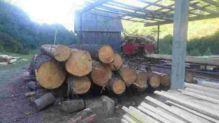 На Закарпатті виявили незаконну лісопилку
