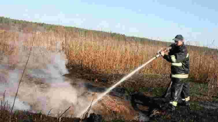 У Гамаліївці третій день гасять пожежу на торфовищі
