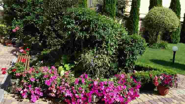 У Львові обрали найгарніше озеленені подвір'я та тераси