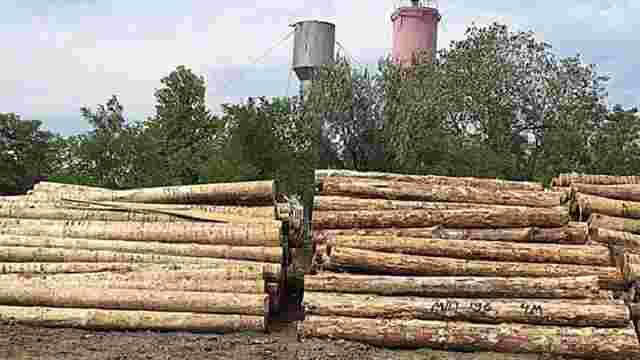 Поліцейські викрили схему незаконного експорту лісу в Одеській області
