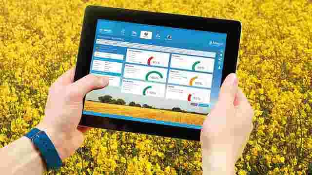 Компанія BASF запустить безкоштовну IT-платформу для українських фермерів