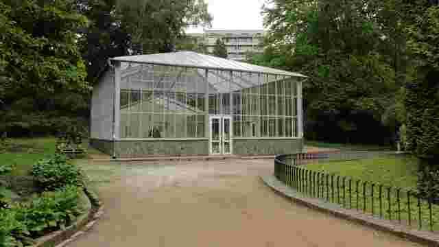 В оранжереї Стрийського парку висадять екзотичні рослини