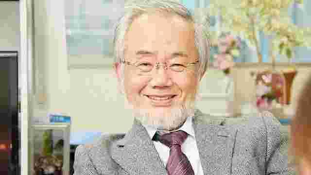 Нобелівську премію з медицини отримав японець Йосінорі Осумі