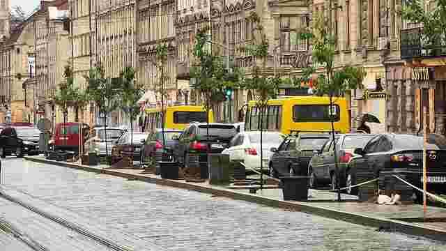 Львів'яни зібрали на спільнокошті понад ₴50 тис. на озеленення міста