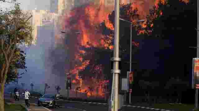 Палестинське угрупування взяло відповідальність за пожежу в Хайфі