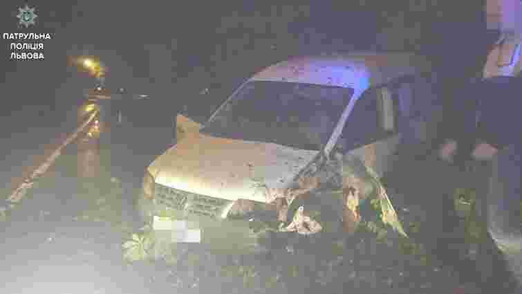 За одну ніч львівські патрульні зупинили десятьох п'яних водіїв