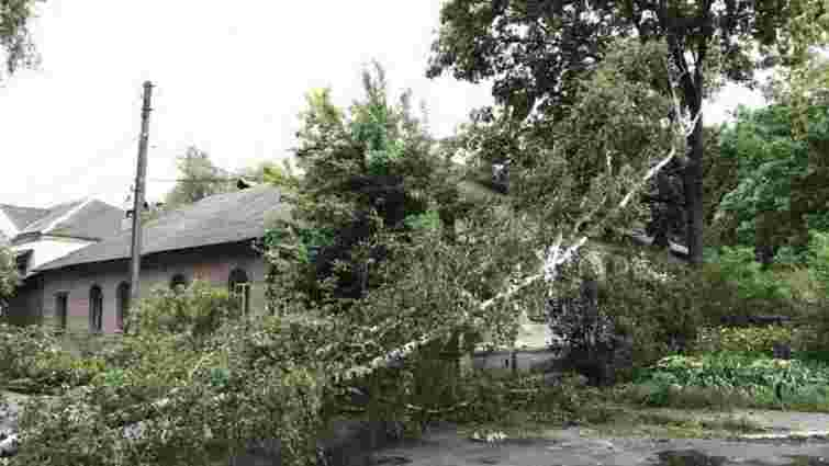 Через негоду в Україні знеструмлено 745 населених пунктів, постраждали 17 осіб