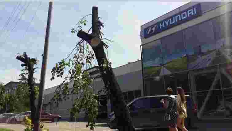 На вул. Липинського незаконно обрізали дерева