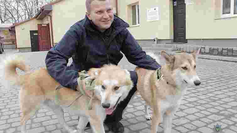 В управлінні патрульної поліції Львова житиме двоє собак