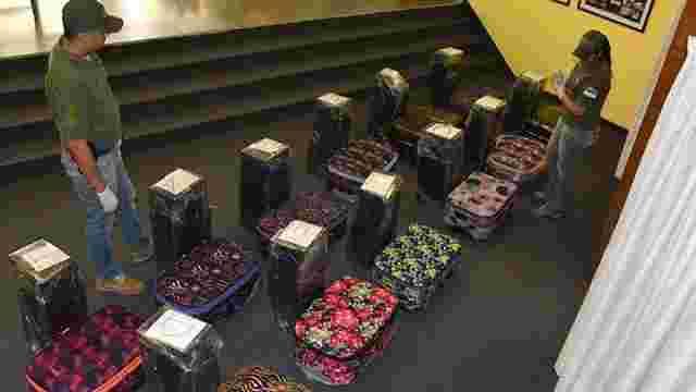 Спецслужби знайшли майже 400 кг кокаїну в російському посольстві в Аргентині