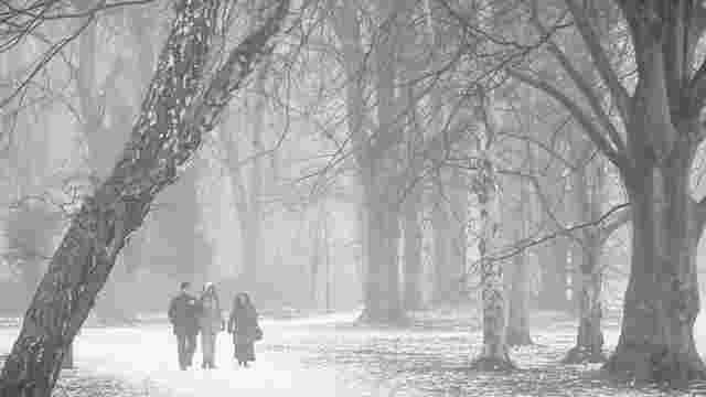 Синоптики попереджають про туман та ожеледицю на дорогах Львова та області