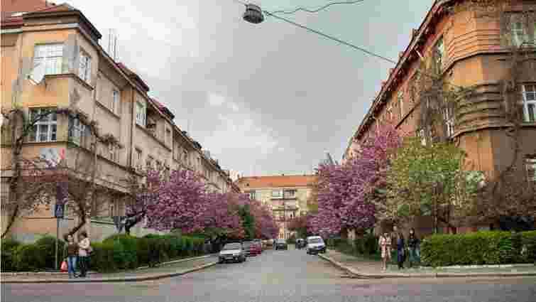 Забудований чехами історичний район у центрі Ужгорода хочуть включити до спадщини ЮНЕСКО