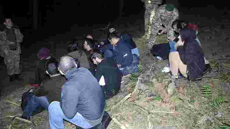 Мостиські прикордонники затримали поблизу кордону групу нелегалів