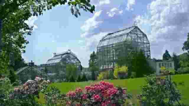 У перший день липня львів'ян запрошують на День відкритих дверей у двох ботанічних садах