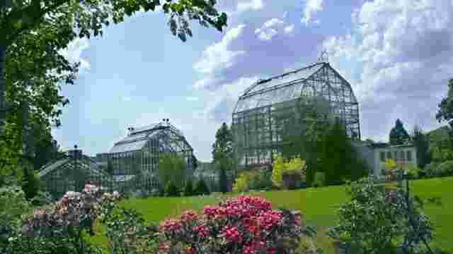 У львівському ботанічному саду відбудеться день відкритих дверей