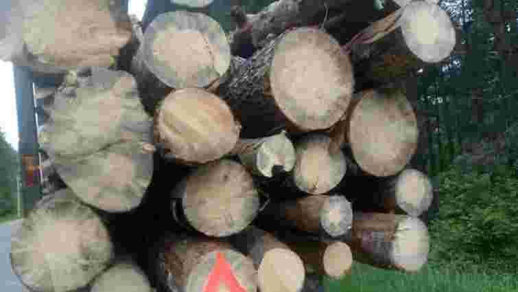 На Львівщині патрульні затримали вантажівку з нечіпованою деревиною