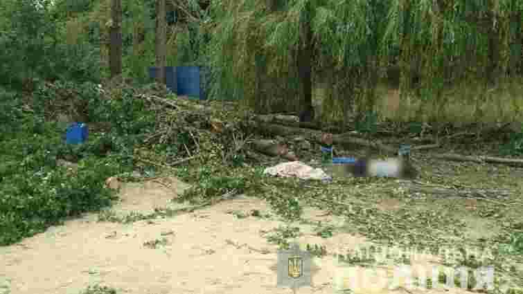 У Харкові унаслідок пориву вітру на людей впало дерево, двоє загиблих