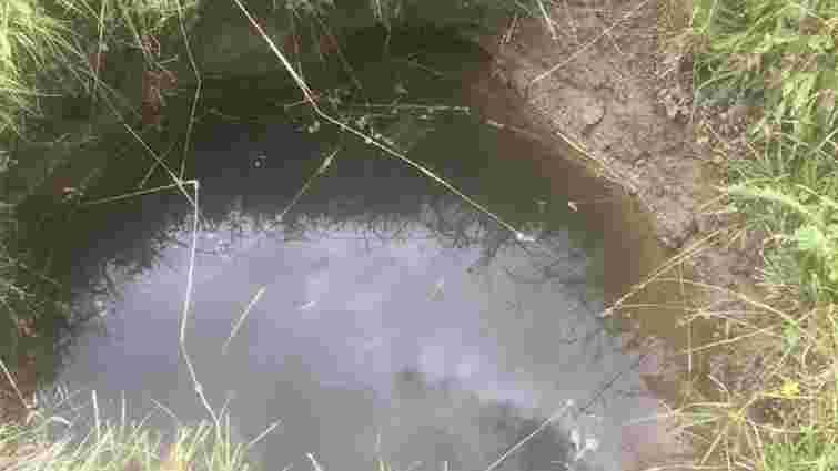 У Сколівському районі півторарічна дівчинка втопилася в колодязі