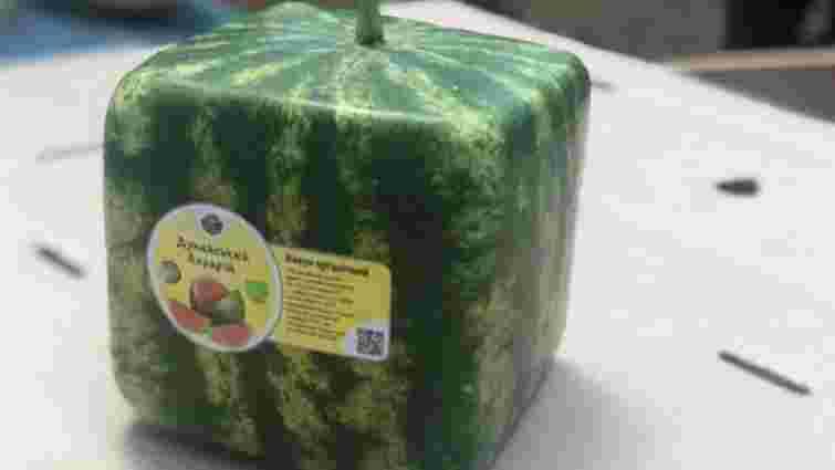 В Україні почали вирощувати кубічні кавуни