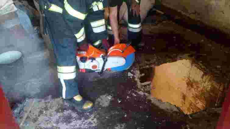 На Львівщині рятувальники витягли корову, яка провалилася у підвал