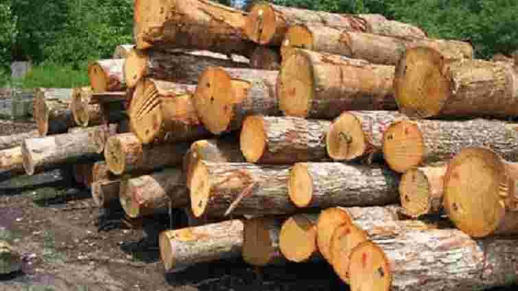 На Львівщині через службову недбалість засудили майстра військового лісопідприємства