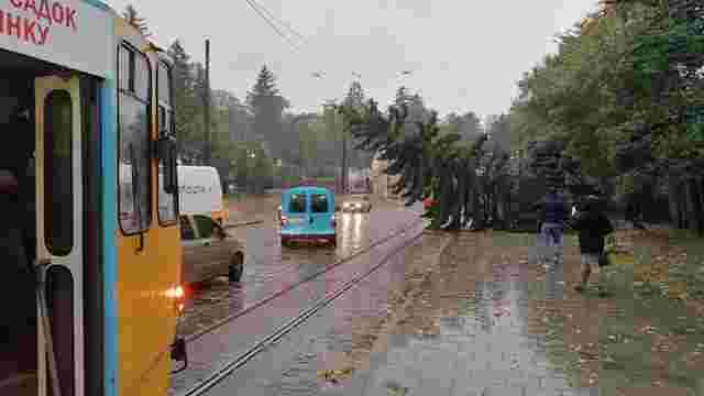 Через повалені негодою дерева на кількох вулицях Львова не курсує електротранспорт