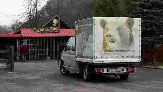 У ведмежий притулок «Домажир» біля Львова доставили двох ведмедиць