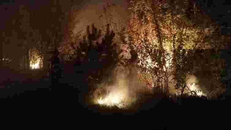 Десятки масштабних лісових пожеж спалахнули на Луганщині