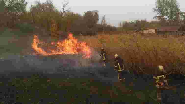 Пожежі на Луганщині спалахнули після підпалу російським терористом сухостою