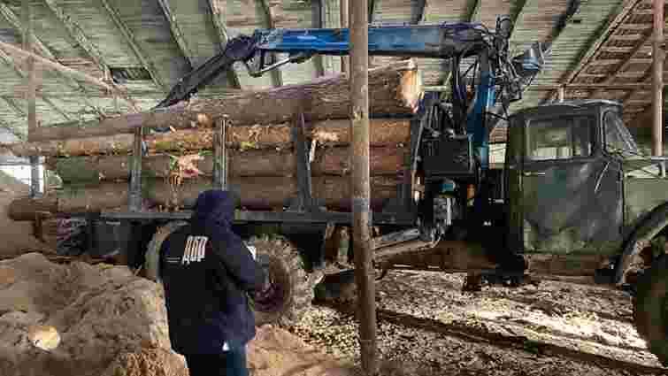 На Львівщині викрили схему незаконної вирубки та експорту лісу за кордон