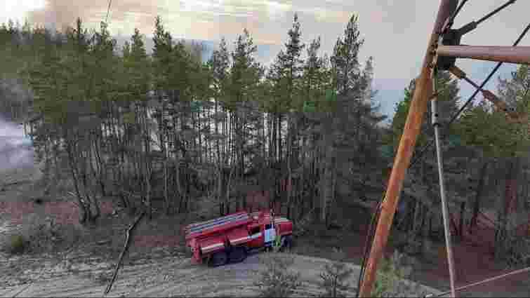 Рятувальники повністю ліквідували лісові пожежі на Луганщині