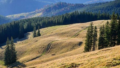 На Старосамбірщині створили національний природний парк «Королівські Бескиди»