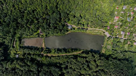 Озеро «Електрон» у Винниківському лісі забудують дачами