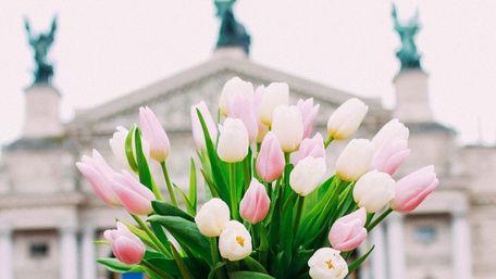 Головні новини Львова за 1 березня