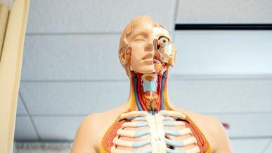 Нова програма медичних гарантій