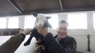 Священик із Золочева навчає людей з інвалідністю сироварінню та роботі на фермі