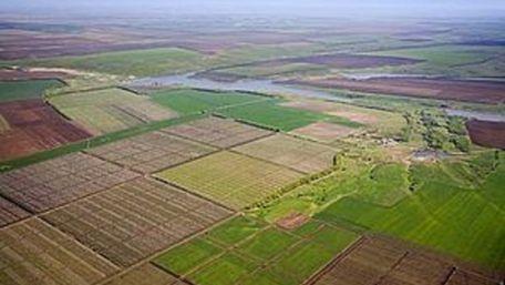 Уряд схвалив законопроект про скасування права на безкоштовні 2 гектари землі
