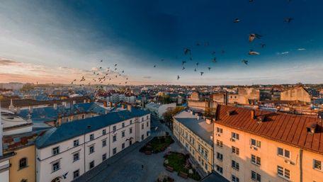 Головні новини Львова за 21 червня