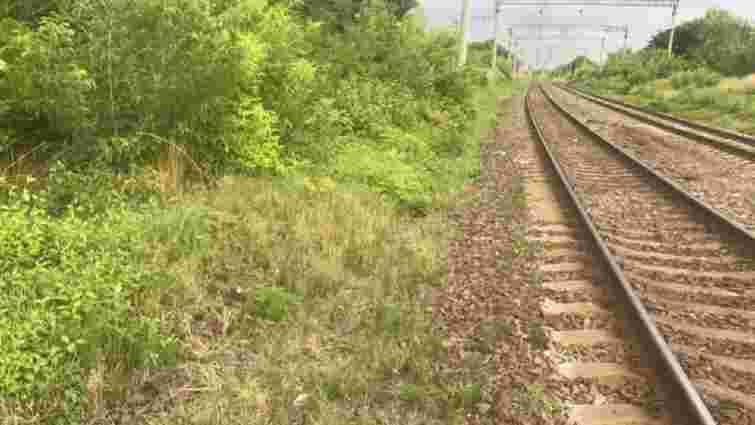 З потяга «Львів-Маріуполь» під час руху випав 23-річний пасажир