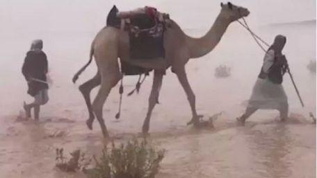 Через аномальну спеку в ОАЕ навчились штучно викликати дощі