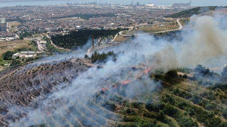 Через лісові пожежі МЗС закликало українців не їхати до Туреччини