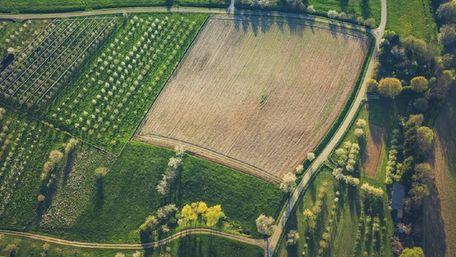 Міністр назвав середню ціну гектара ріллі в Україні