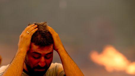 Відповідальність за пожежі в Туреччині взяли на себе курдські терористи