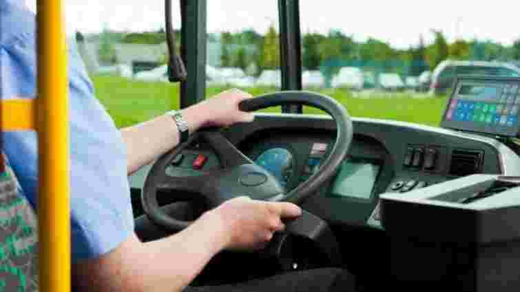 Водія маршрутки «Чернівці–Путила» оштрафували на 17 тис. грн за стоячих пасажирів